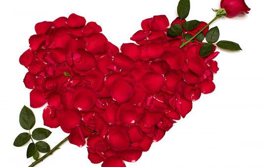چگونه قلب همسر خود را از عشق سيراب کنید، توصيه اي به آقايان!